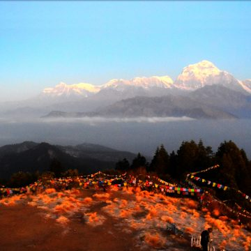 Mt Dhaulagiri view from Poon Hill