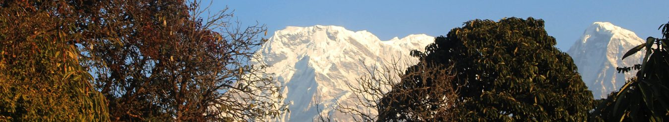 Train Yourself Mardi Himal Trek